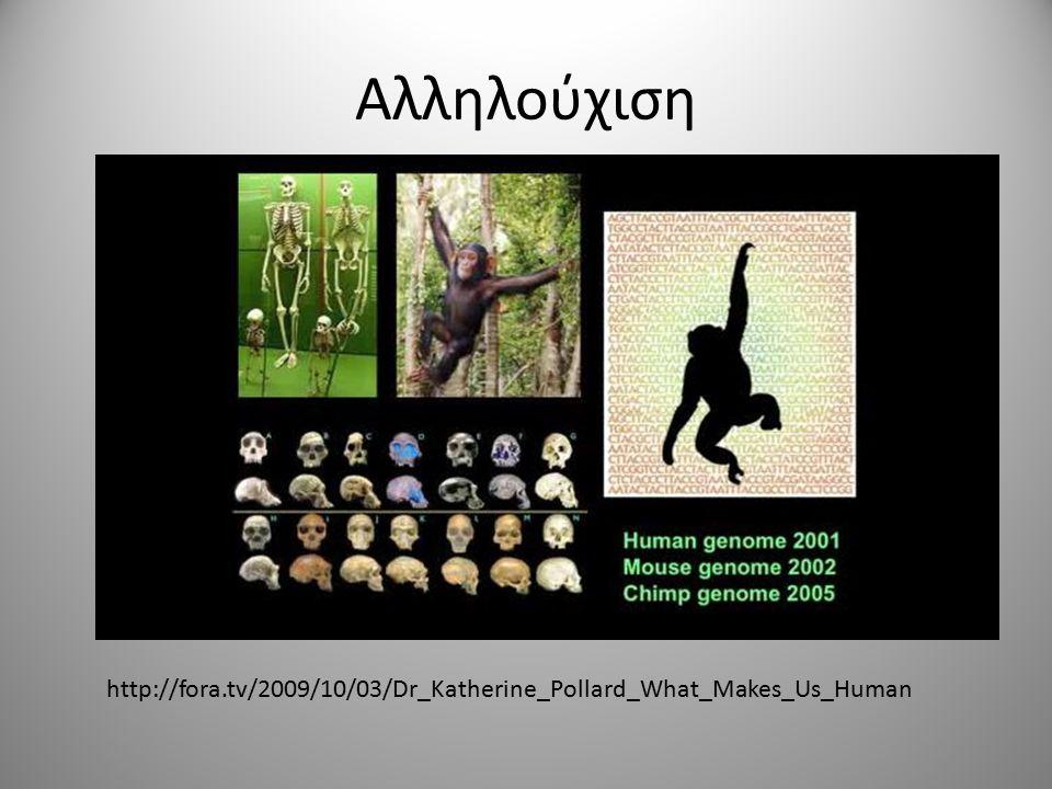 Αλληλούχιση http://fora.tv/2009/10/03/Dr_Katherine_Pollard_What_Makes_Us_Human