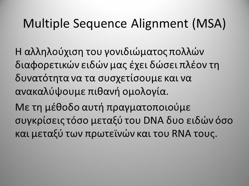 Multiple Sequence Alignment (MSA) Η αλληλούχιση του γονιδιώματος πολλών διαφορετικών ειδών μας έχει δώσει πλέον τη δυνατότητα να τα συσχετίσουμε και να ανακαλύψουμε πιθανή ομολογία.