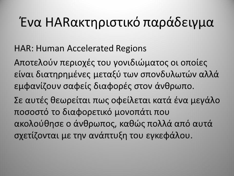Ένα HARακτηριστικό παράδειγμα HAR: Human Accelerated Regions Aποτελούν περιοχές του γονιδιώματος οι οποίες είναι διατηρημένες μεταξύ των σπονδυλωτών αλλά εμφανίζουν σαφείς διαφορές στον άνθρωπο.