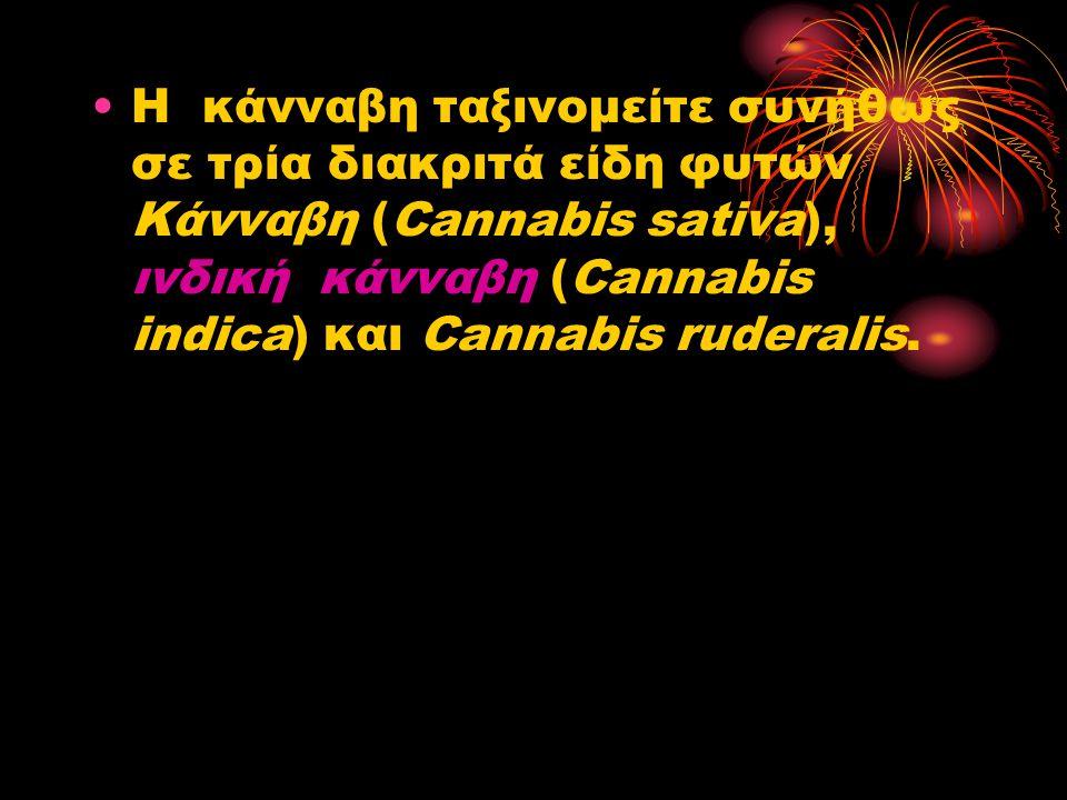 Η κάνναβη ταξινομείτε συνήθως σε τρία διακριτά είδη φυτών Κάνναβη (Cannabis sativa), ινδική κάνναβη (Cannabis indica) και Cannabis ruderalis.