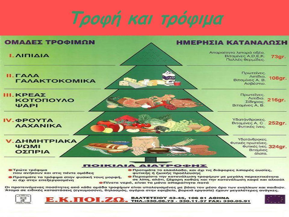 Η διατροφή είναι θέμα «ζωτικής σημασίας» γιατί ο ανθρώπινος οργανισμός, προκειμένου να διατηρηθεί στη ζωή, πρέπει να προσλαμβάνει τροφή.