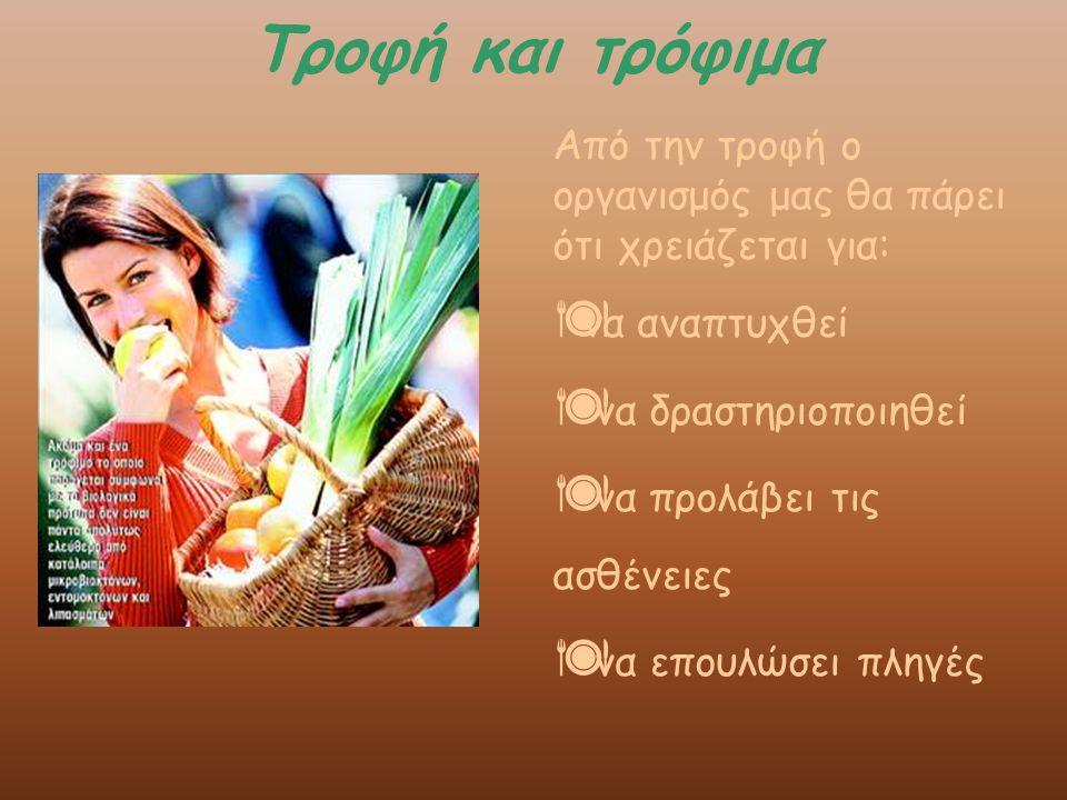 Τροφή και τρόφιμα Η τροφή είναι απαραίτητη για να λειτουργήσει φυσιολογικά ο ανθρώπινος οργανισμός, προκειμένου να διατηρηθεί στη ζωή.