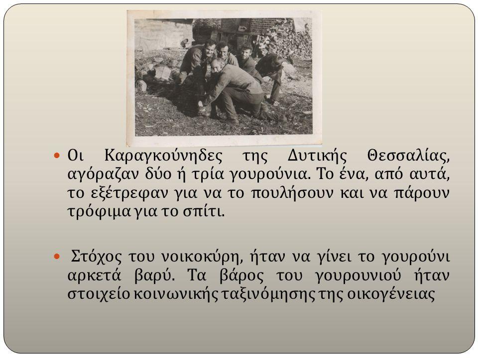 Οι Καραγκούνηδες της Δυτικής Θεσσαλίας, αγόραζαν δύο ή τρία γουρούνια.