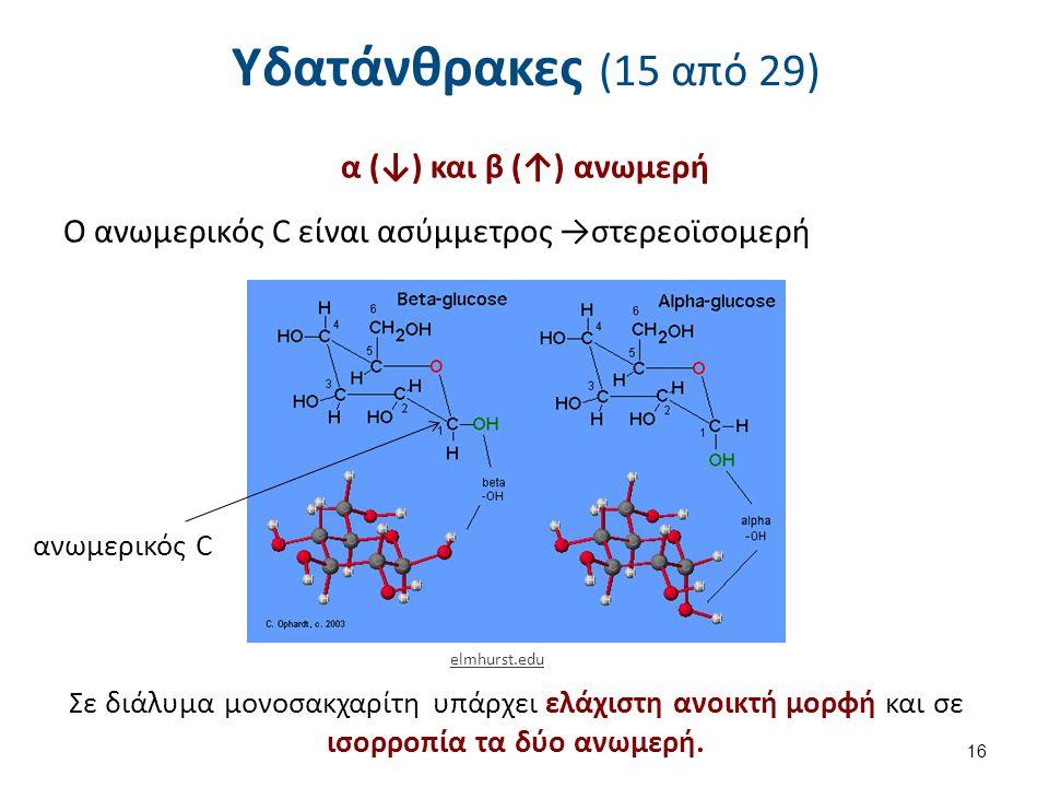 Υδατάνθρακες (15 από 29) α (↓) και β (↑) ανωμερή Ο ανωμερικός C είναι ασύμμετρος →στερεοϊσομερή 16 elmhurst.edu ανωμερικός C Σε διάλυμα μονοσακχαρίτη υπάρχει ελάχιστη ανοικτή μορφή και σε ισορροπία τα δύο ανωμερή.