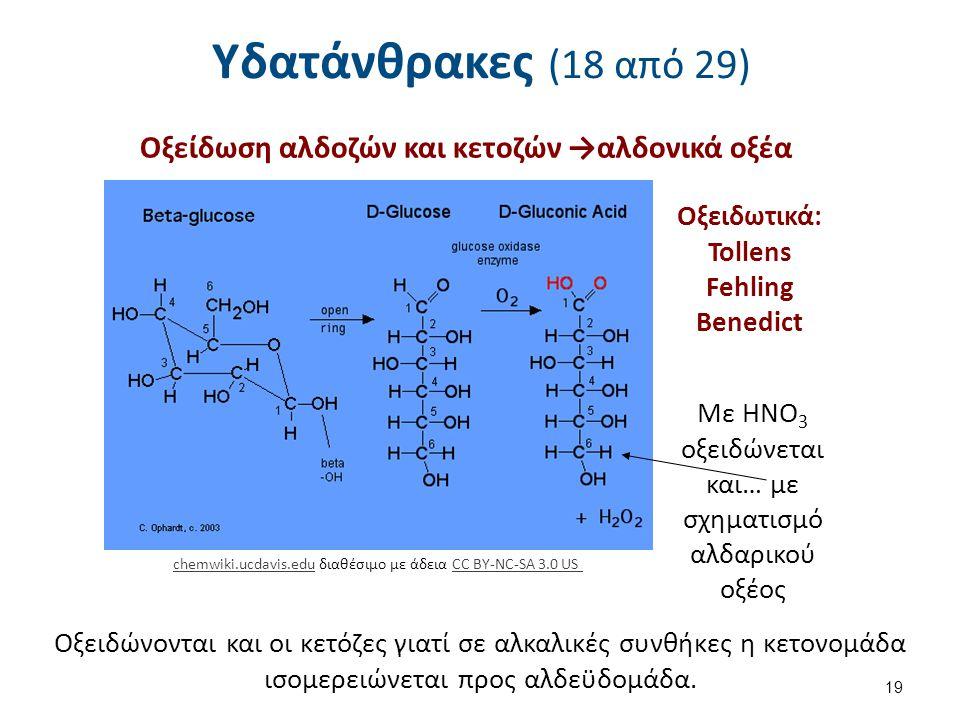 Υδατάνθρακες (18 από 29) Οξείδωση αλδοζών και κετοζών →αλδονικά οξέα 19 chemwiki.ucdavis.educhemwiki.ucdavis.edu διαθέσιμο με άδεια CC BY-NC-SA 3.0 USCC BY-NC-SA 3.0 US Οξειδωτικά: Tollens Fehling Benedict Με HNO 3 οξειδώνεται και… με σχηματισμό αλδαρικού οξέος Οξειδώνονται και οι κετόζες γιατί σε αλκαλικές συνθήκες η κετονομάδα ισομερειώνεται προς αλδεϋδομάδα.