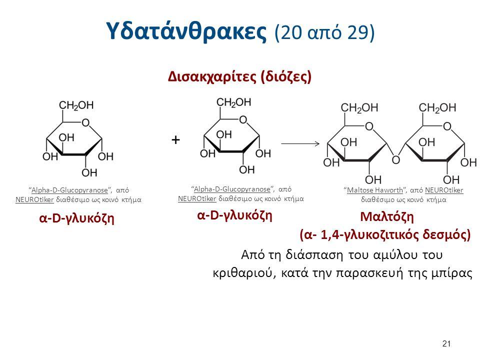 Υδατάνθρακες (20 από 29) Δισακχαρίτες (διόζες) 21 Alpha-D-Glucopyranose , από NEUROtiker διαθέσιμο ως κοινό κτήμαAlpha-D-Glucopyranose NEUROtiker α-D-γλυκόζη + Alpha-D-Glucopyranose , από NEUROtiker διαθέσιμο ως κοινό κτήμαAlpha-D-Glucopyranose NEUROtiker α-D-γλυκόζη Maltose Haworth , από NEUROtiker διαθέσιμο ως κοινό κτήμαMaltose HaworthNEUROtiker Μαλτόζη (α- 1,4-γλυκοζιτικός δεσμός) Από τη διάσπαση του αμύλου του κριθαριού, κατά την παρασκευή της μπίρας