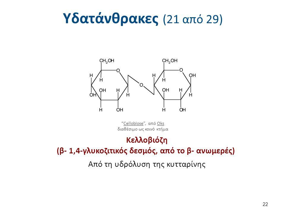 Υδατάνθρακες (21 από 29) 22 Cellobiose , από OksCellobioseOks διαθέσιμο ως κοινό κτήμα Κελλοβιόζη (β- 1,4-γλυκοζιτικός δεσμός, από το β- ανωμερές) Από τη υδρόλυση της κυτταρίνης