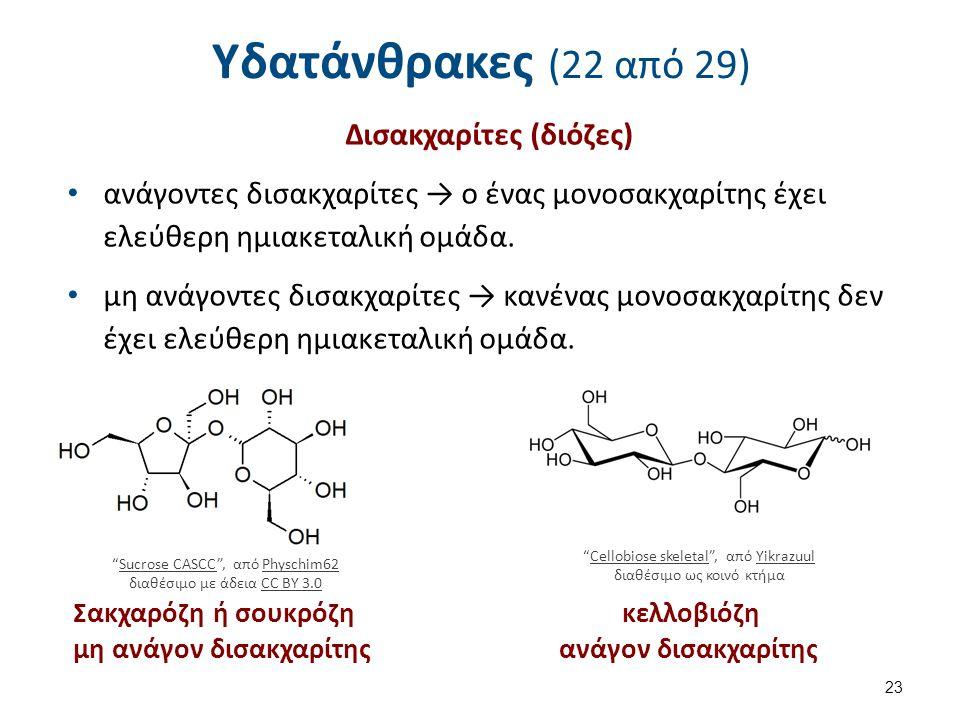 Υδατάνθρακες (22 από 29) Δισακχαρίτες (διόζες) ανάγοντες δισακχαρίτες → ο ένας μονοσακχαρίτης έχει ελεύθερη ημιακεταλική ομάδα. μη ανάγοντες δισακχαρί
