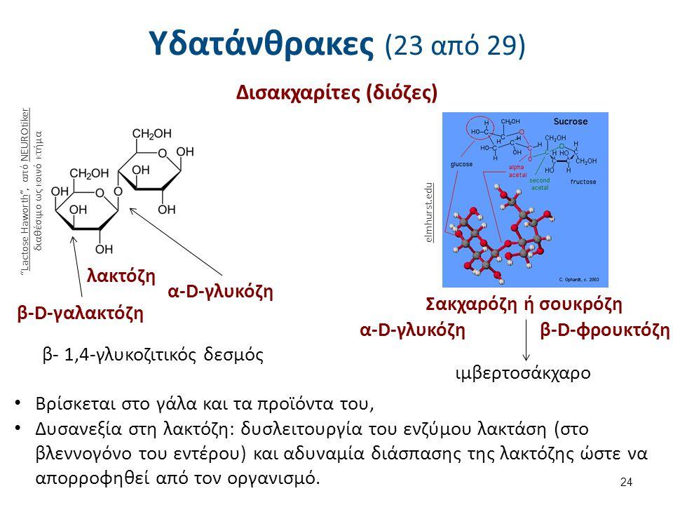 Υδατάνθρακες (23 από 29) Δισακχαρίτες (διόζες) 24 Lactose Haworth , από NEUROtiker διαθέσιμο ως κοινό κτήμαLactose HaworthNEUROtiker λακτόζη β-D-γαλακτόζη α-D-γλυκόζη β- 1,4-γλυκοζιτικός δεσμός Σακχαρόζη ή σουκρόζη α-D-γλυκόζη β-D-φρουκτόζη ιμβερτοσάκχαρο elmhurst.edu Βρίσκεται στο γάλα και τα προϊόντα του, Δυσανεξία στη λακτόζη: δυσλειτουργία του ενζύμου λακτάση (στο βλεννογόνο του εντέρου) και αδυναμία διάσπασης της λακτόζης ώστε να απορροφηθεί από τον οργανισμό.