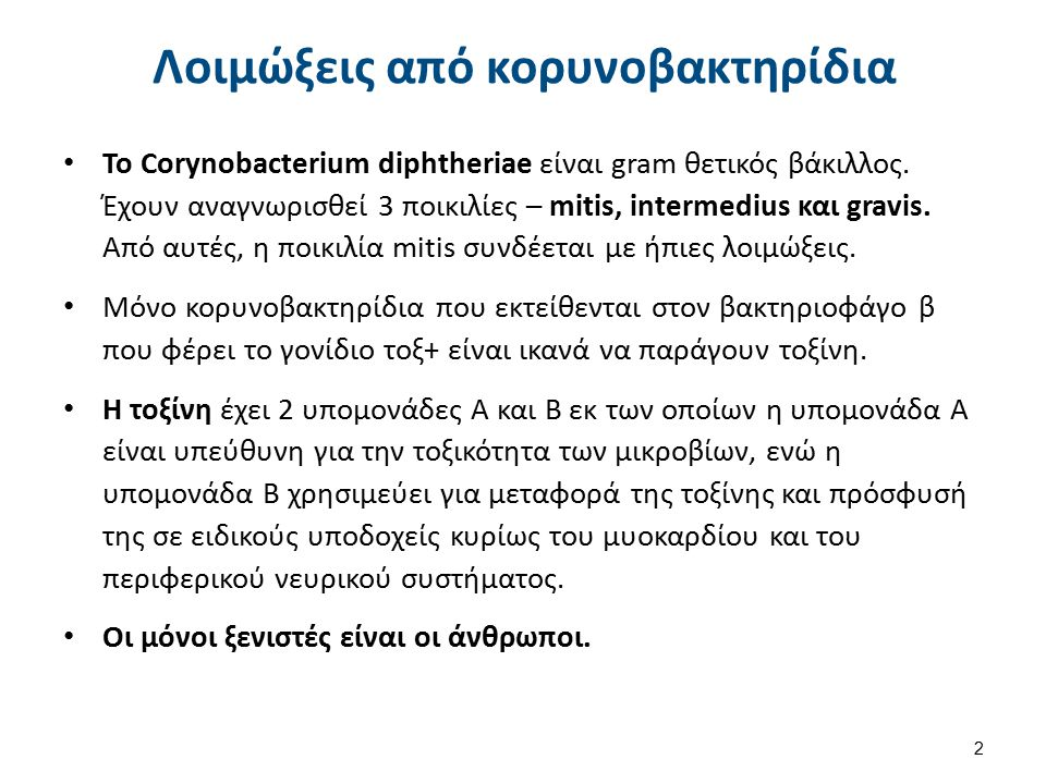 Λοιμώξεις από κορυνοβακτηρίδια Το Corynobacterium diphtheriae είναι gram θετικός βάκιλλος.