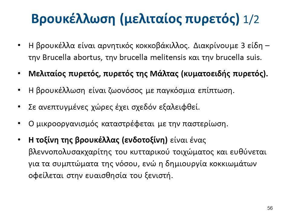 Βρουκέλλωση (μελιταίος πυρετός) 1/2 Η βρουκέλλα είναι αρνητικός κοκκοβάκιλλος.