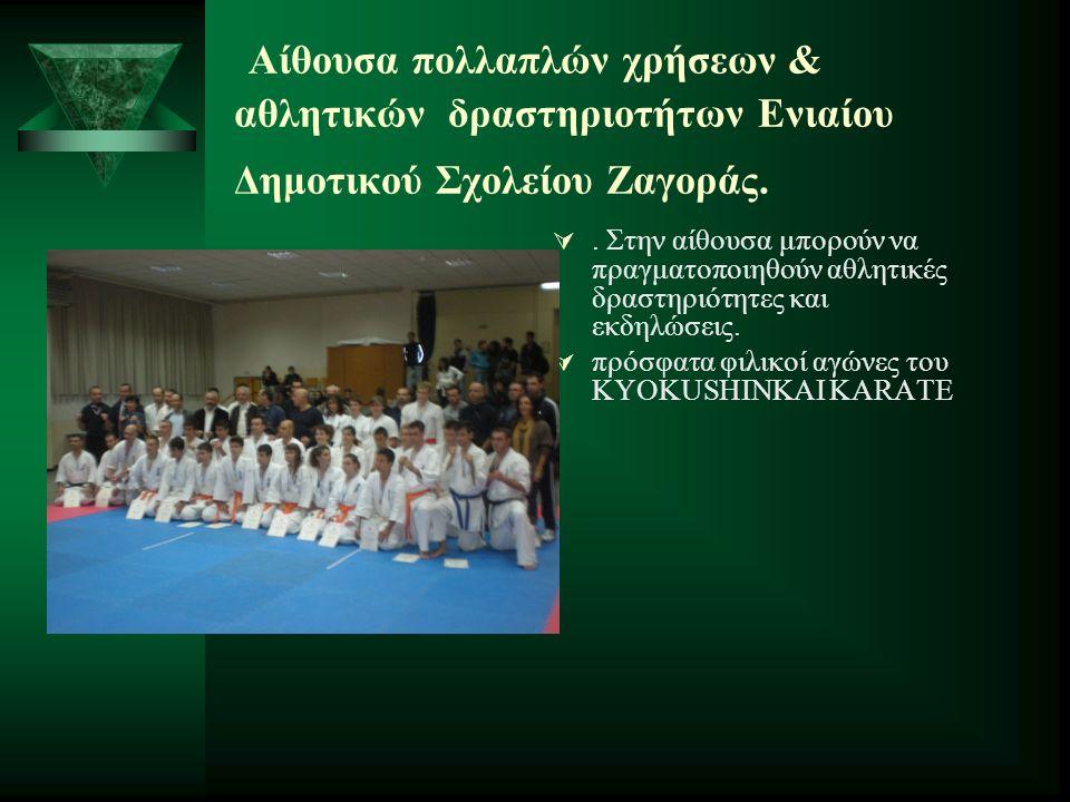 Αίθουσα πολλαπλών χρήσεων & αθλητικών δραστηριοτήτων Ενιαίου Δημοτικού Σχολείου Ζαγοράς. . Στην αίθουσα μπορούν να πραγματοποιηθούν αθλητικές δραστηρ