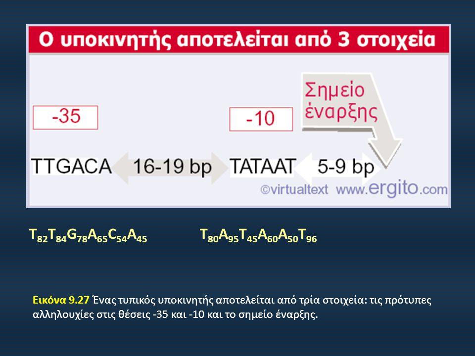 Εικόνα 9.27 Ένας τυπικός υποκινητής αποτελείται από τρία στοιχεία: τις πρότυπες αλληλουχίες στις θέσεις -35 και -10 και το σημείο έναρξης.
