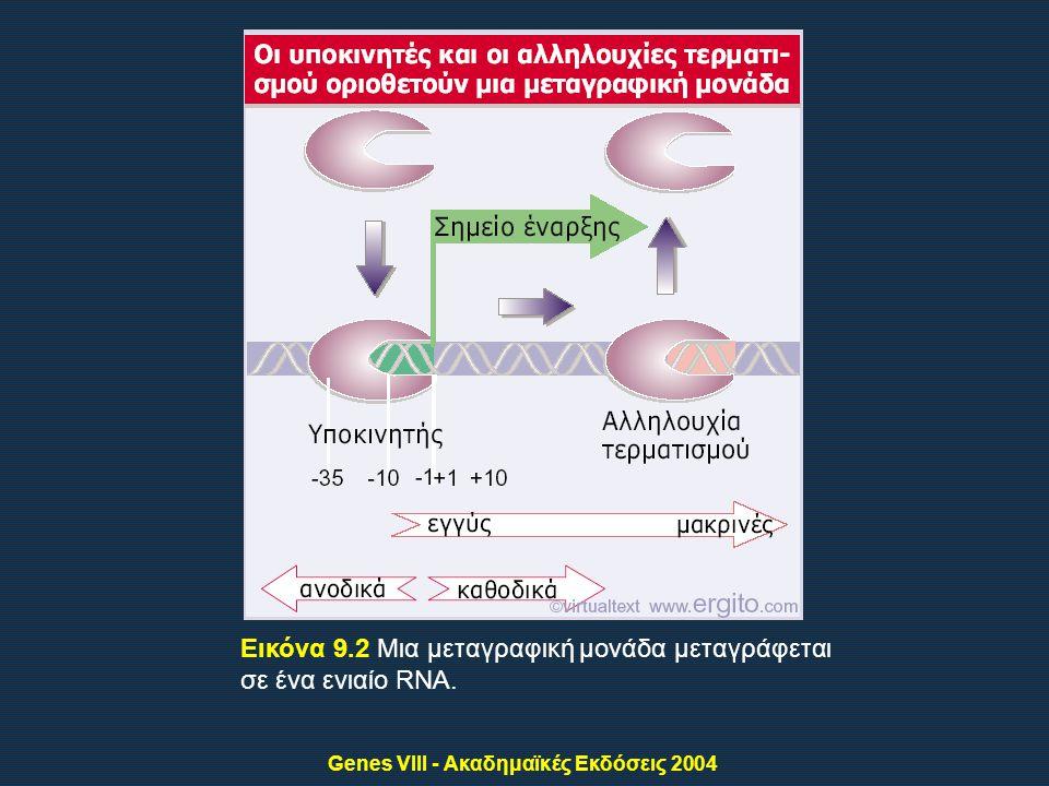 Genes VIII - Ακαδημαϊκές Εκδόσεις 2004 Εικόνα 9.2 Μια μεταγραφική μονάδα μεταγράφεται σε ένα ενιαίο RNA.