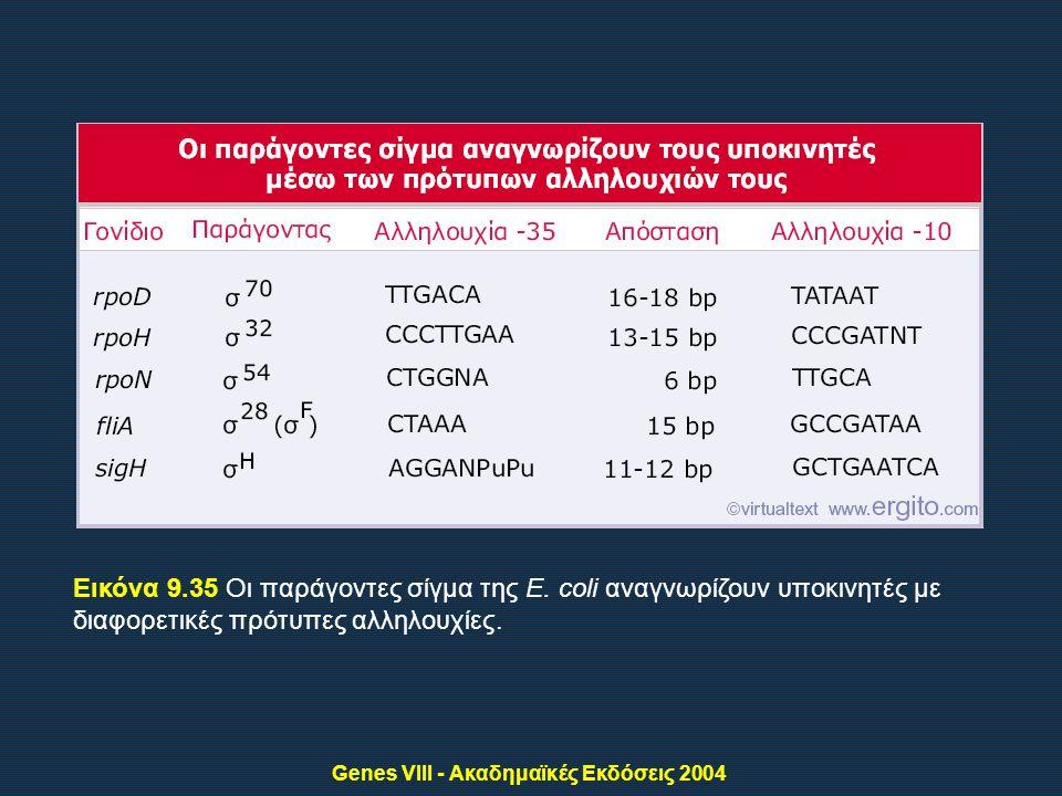 Genes VIII - Ακαδημαϊκές Εκδόσεις 2004 Εικόνα 9.35 Οι παράγοντες σίγμα της E.