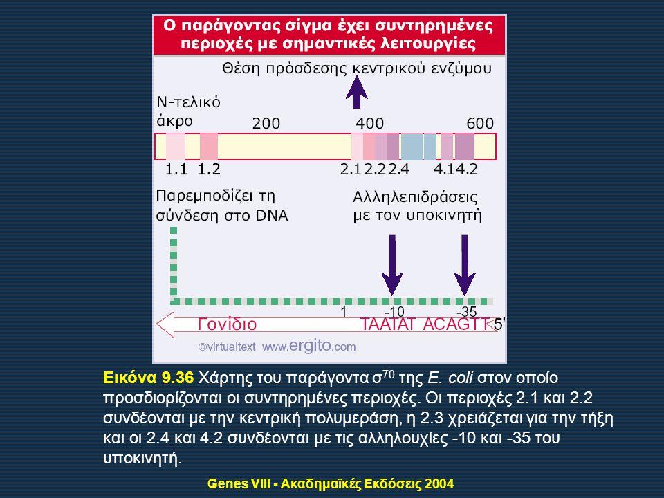 Genes VIII - Ακαδημαϊκές Εκδόσεις 2004 Εικόνα 9.36 Χάρτης του παράγοντα σ 70 της E.