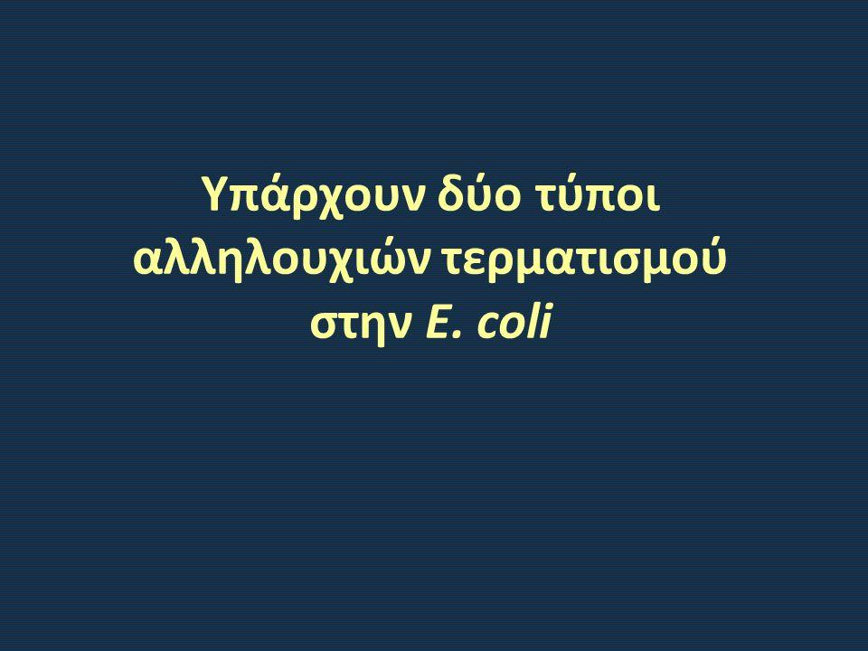 Υπάρχουν δύο τύποι αλληλουχιών τερματισμού στην E. coli