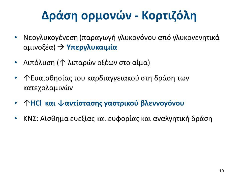 Δράση ορμονών - Κορτιζόλη Νεογλυκογένεση (παραγωγή γλυκογόνου από γλυκογενητικά αμινοξέα)  Υπεργλυκαιμία Λιπόλυση (↑ λιπαρών οξέων στο αίμα) ↑Ευαισθη