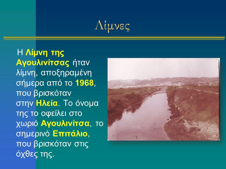 Λίμνες Η Λίμνη της Αγουλινίτσας ήταν λίμνη, αποξηραμένη σήμερα από το 1968, που βρισκόταν στην Ηλεία. Το όνομα της το οφείλει στο χωριό Αγουλινίτσα, τ