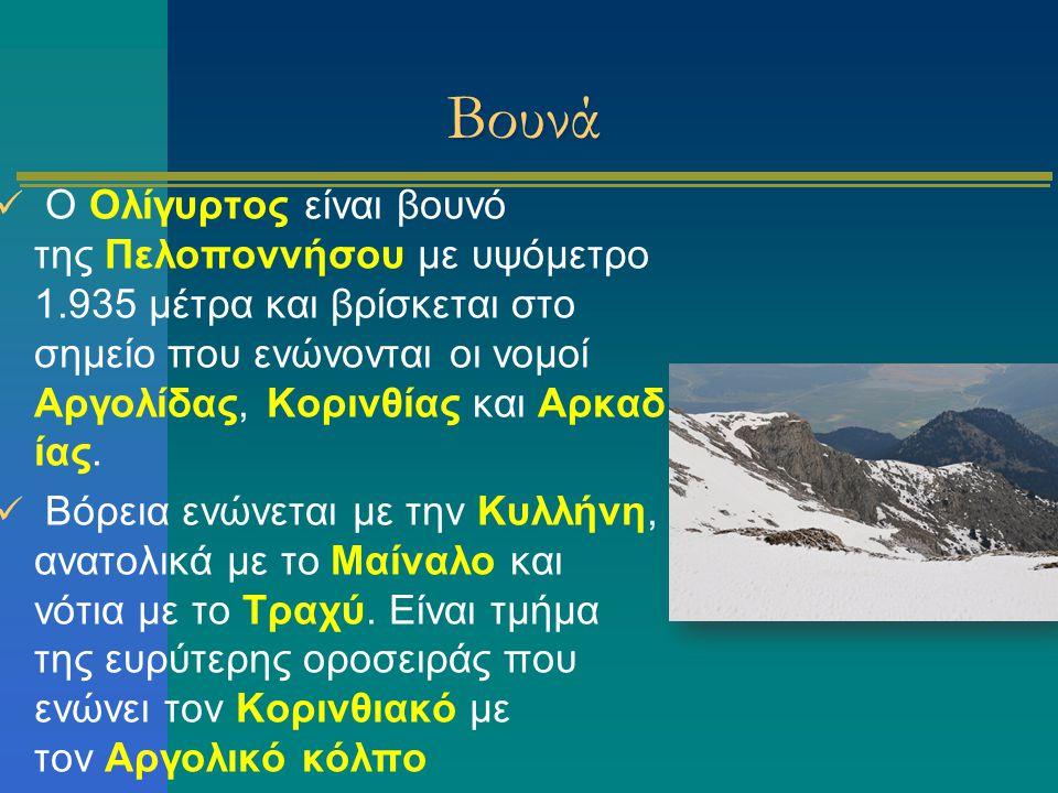 Βουνά Ο Ολίγυρτος είναι βουνό της Πελοποννήσου με υψόμετρο 1.935 μέτρα και βρίσκεται στο σημείο που ενώνονται οι νομοί Αργολίδας, Κορινθίας και Αρκαδ