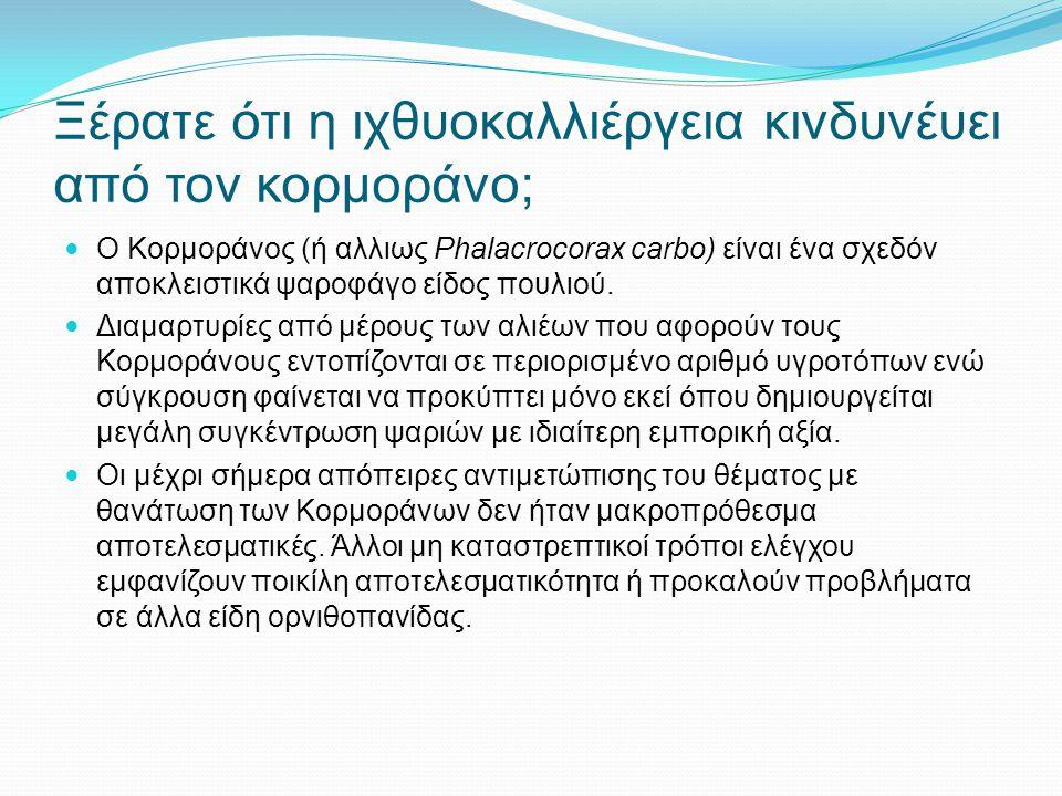 Ξέρατε ότι η ιχθυοκαλλιέργεια κινδυνέυει από τον κορμοράνο; Ο Κορμοράνος (ή αλλιως Phalacrocorax carbo) είναι ένα σχεδόν αποκλειστικά ψαροφάγο είδος π