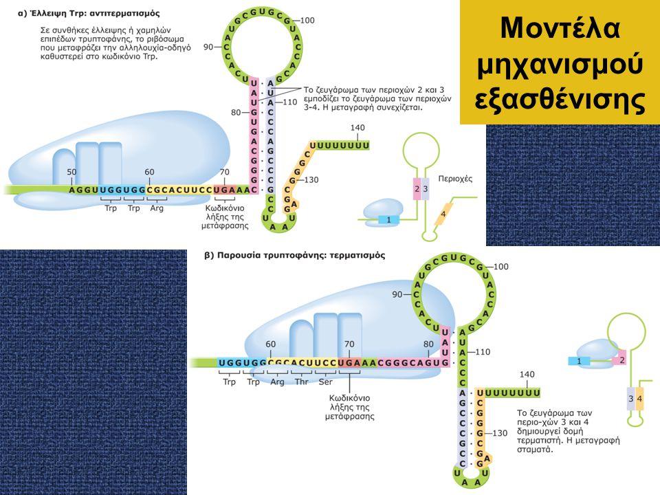 Μοντέλα μηχανισμού εξασθένισης