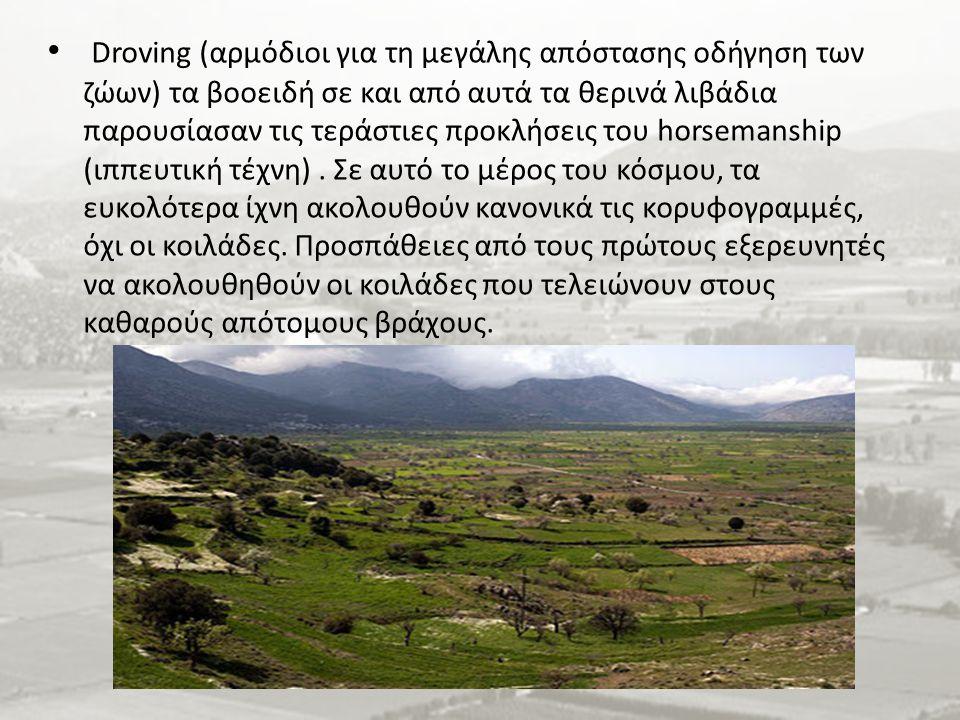 Droving (αρμόδιοι για τη μεγάλης απόστασης οδήγηση των ζώων) τα βοοειδή σε και από αυτά τα θερινά λιβάδια παρουσίασαν τις τεράστιες προκλήσεις του horsemanship (ιππευτική τέχνη).