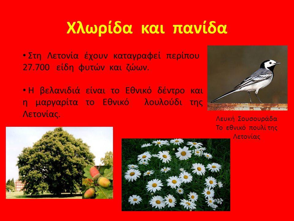 Χλωρίδα και πανίδα Λευκή Σουσουράδα Το εθνικό πουλί της Λετονίας Στη Λετονία έχουν καταγραφεί περίπου 27.700 είδη φυτών και ζώων. Η βελανιδιά είναι το