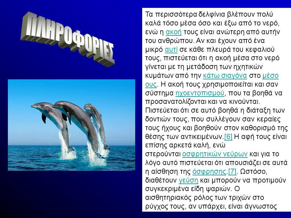 Τα περισσότερα δελφίνια βλέπουν πολύ καλά τόσο μέσα όσο και έξω από το νερό, ενώ η ακοή τους είναι ανώτερη από αυτήν του ανθρώπου. Αν και έχουν από έν