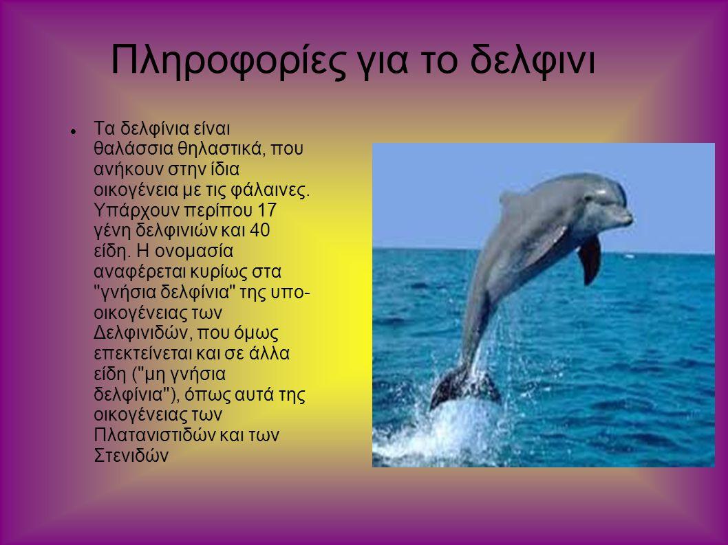 Πληροφορίες για το δελφινι Τα δελφίνια είναι θαλάσσια θηλαστικά, που ανήκουν στην ίδια οικογένεια με τις φάλαινες. Υπάρχουν περίπου 17 γένη δελφινιών