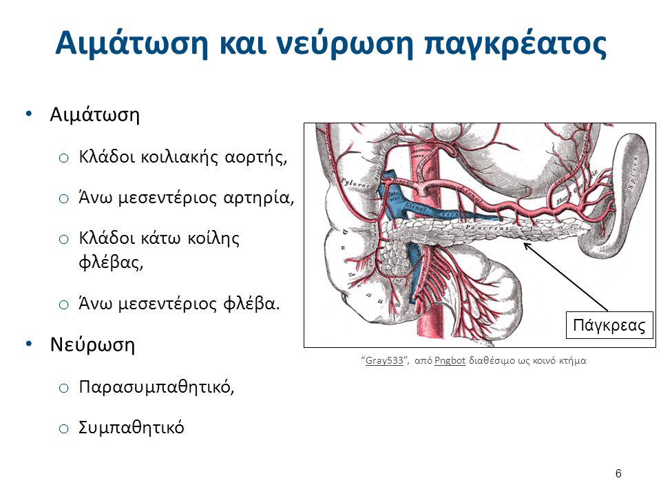 Αιμάτωση και νεύρωση παγκρέατος Αιμάτωση o Κλάδοι κοιλιακής αορτής, o Άνω μεσεντέριος αρτηρία, o Κλάδοι κάτω κοίλης φλέβας, o Άνω μεσεντέριος φλέβα.