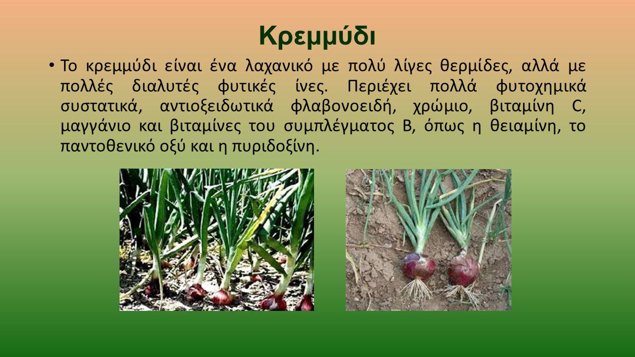 Κρεμμύδι Το κρεμμύδι είναι ένα λαχανικό με πολύ λίγες θερμίδες, αλλά με πολλές διαλυτές φυτικές ίνες. Περιέχει πολλά φυτοχημικά συστατικά, αντιοξειδωτ