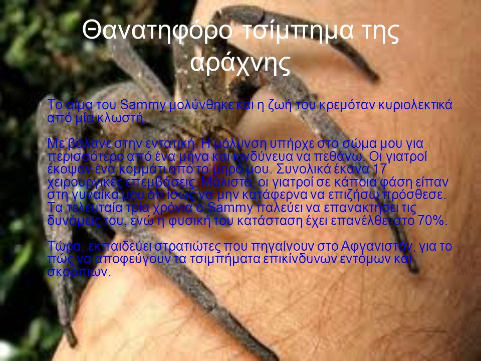 Παράξενες αράχνες