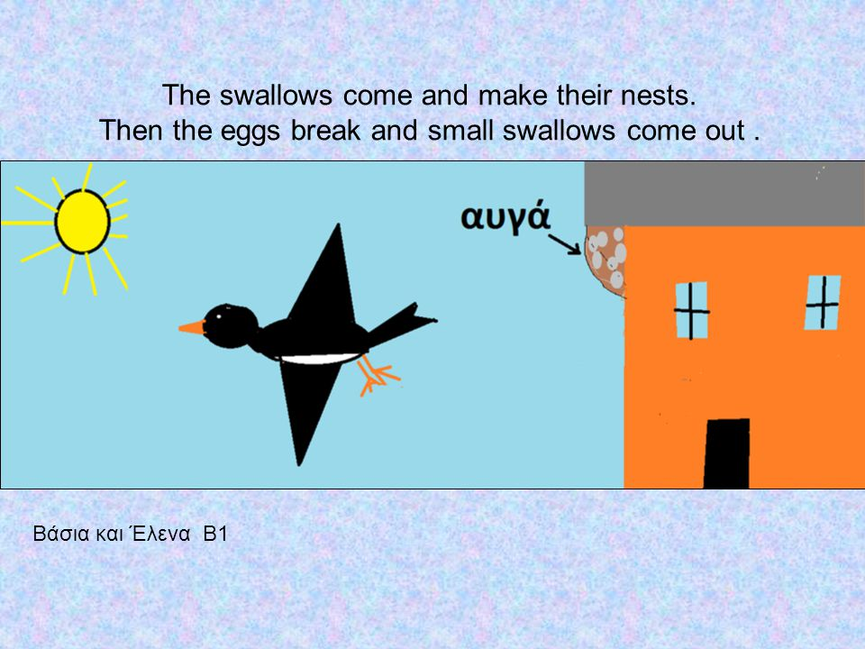 The swallows come and make their nests. Then the eggs break and small swallows come out.