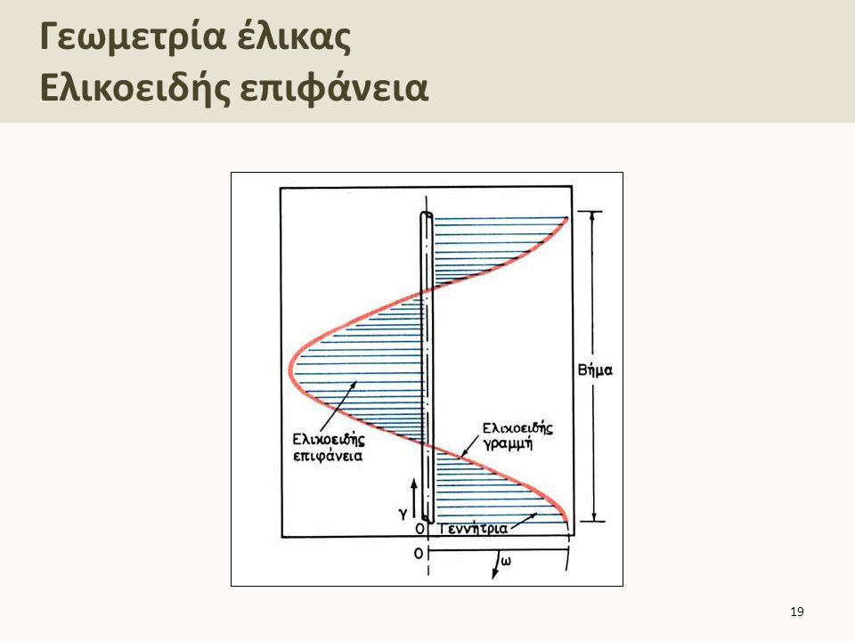 Γεωμετρία έλικας Ελικοειδής επιφάνεια 19