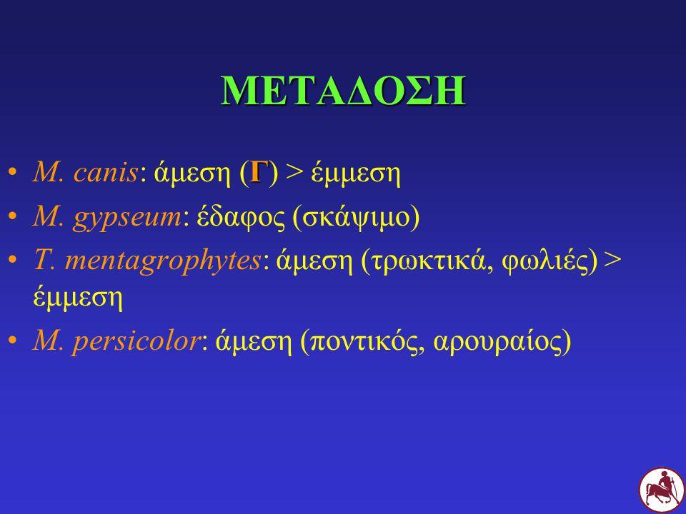 ΜΕΤΑΔΟΣΗ ΓM. canis: άμεση (Γ) > έμμεση M. gypseum: έδαφος (σκάψιμο) T. mentagrophytes: άμεση (τρωκτικά, φωλιές) > έμμεση M. persicolor: άμεση (ποντικό
