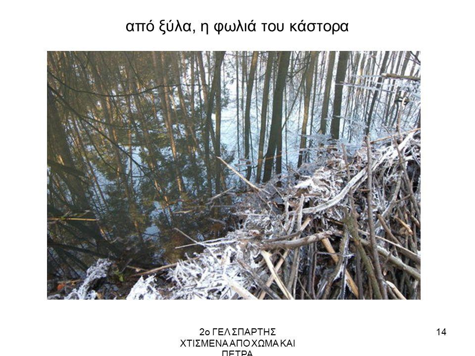 2ο ΓΕΛ ΣΠΑΡΤΗΣ ΧΤΙΣΜΕΝΑ ΑΠΟ ΧΩΜΑ ΚΑΙ ΠΕΤΡΑ 14 από ξύλα, η φωλιά του κάστορα