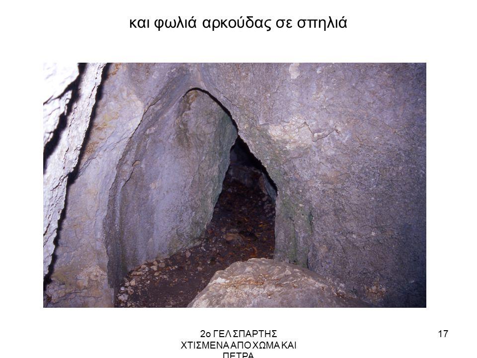 2ο ΓΕΛ ΣΠΑΡΤΗΣ ΧΤΙΣΜΕΝΑ ΑΠΟ ΧΩΜΑ ΚΑΙ ΠΕΤΡΑ 17 και φωλιά αρκούδας σε σπηλιά