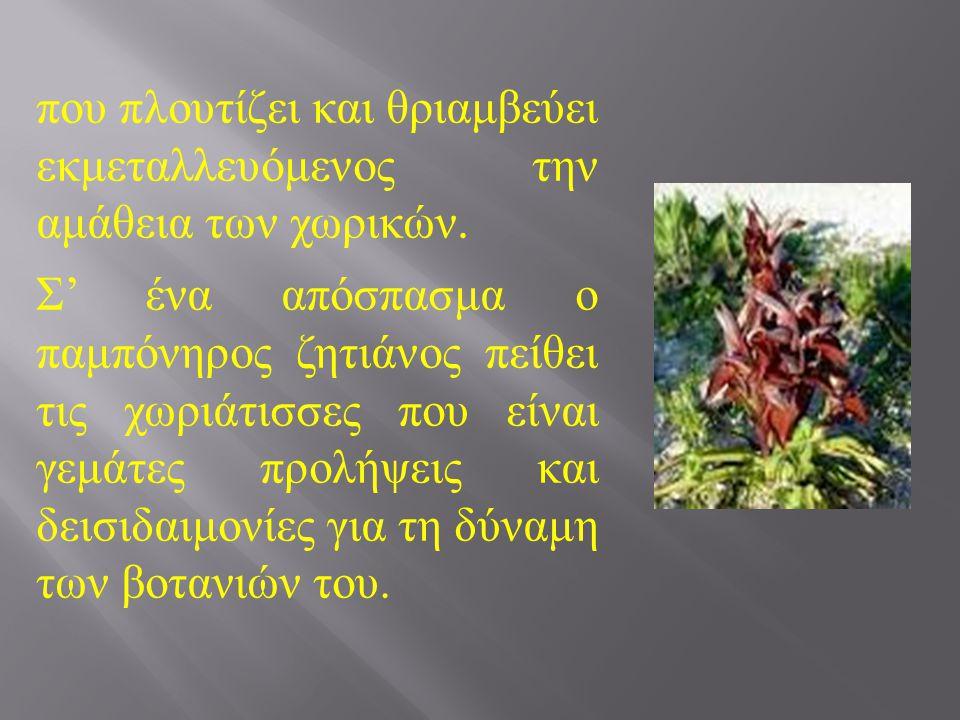 Στη νουβέλα « Ο ζητιάνος » ο Ανδρέας Καρκαβίτσας (1896) περιγράφει την αμάθεια και τις δεισιδαιμονίες του απλού λαού της ελληνικής υπαίθρου.