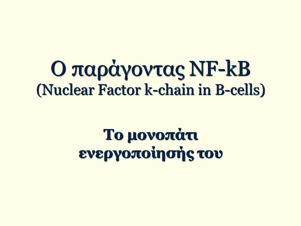 Ο παράγοντας ΝF-kB (Nuclear Factor k-chain in B-cells) Το μονοπάτι ενεργοποίησής του