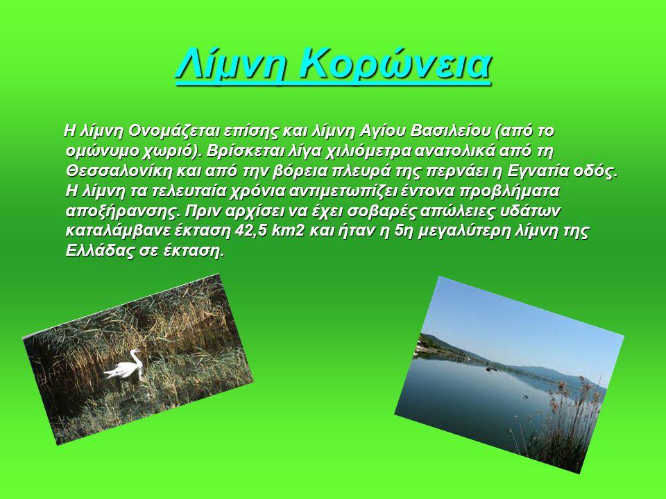 Λίμνη Κορώνεια Η λίμνη Ονομάζεται επίσης και λίμνη Αγίου Βασιλείου (από το ομώνυμο χωριό). Βρίσκεται λίγα χιλιόμετρα ανατολικά από τη Θεσσαλονίκη και