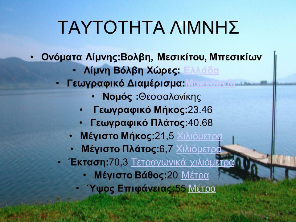 ΤΑΥΤΟΤΗΤΑ ΛΙΜΝΗΣ Ονόματα Λίμνης:Βολβη, Μεσικίτου, Μπεσικίων Λίμνη Βόλβη Χώρες: ΕλλάδαΕλλάδα Γεωγραφικό Διαμέρισμα:ΜακεδονίαΜακεδονία Νομός :Θεσσαλονίκ