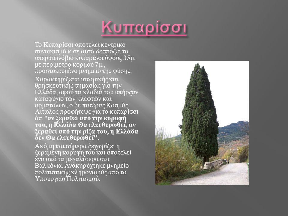 Το Κυπαρίσσι αποτελεί κεντρικό συνοικισμό κ σε αυτό δεσπόζει το υπεραιωνόβιο κυπαρίσσι ύψους 35 μ. με περίμετρο κορμού 7 μ., προστατευμένο μνημείο της