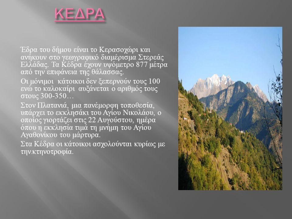 Έδρα του δήμου είναι το Κερασοχώρι και ανήκουν στο γεωγραφικό διαμέρισμα Στερεάς Ελλάδας. Τα Κέδρα έχουν υψόμετρο 877 μέτρα από την επιφάνεια της θάλα
