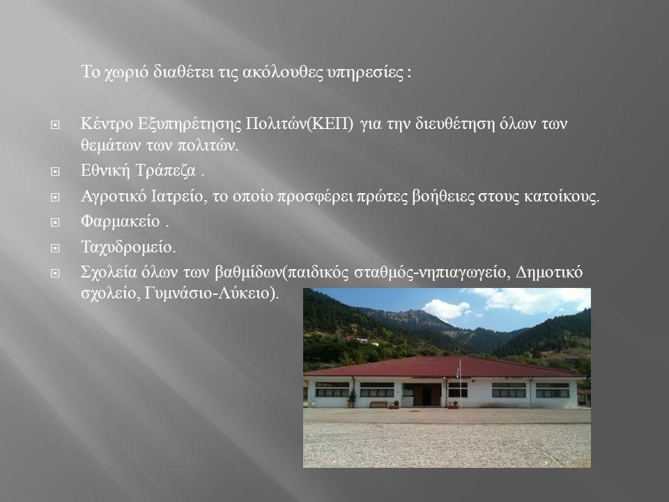Τα επαγγέλματα των κατοίκων του χωριού είναι τα εξής :  Κτηνοτροφία  Μελισσοκομία  Ξυλεία  Ιχθυοκαλλιέργεια πέστροφας  Ελεύθεροι επαγγελματίες ( φούρναρης, ταξιτζής, παντοπώλης, ψητοπώλης, οικοδόμος, επιπλ οπειός, κυροπλάστης, ελαιοχρωματιστής, ηλεκτρολόγος, πωλητής οικοδομικών υλικών ) Για τους επισκέπτες το χωριό διαθέτει ξενώνα για την διαμονή τους.