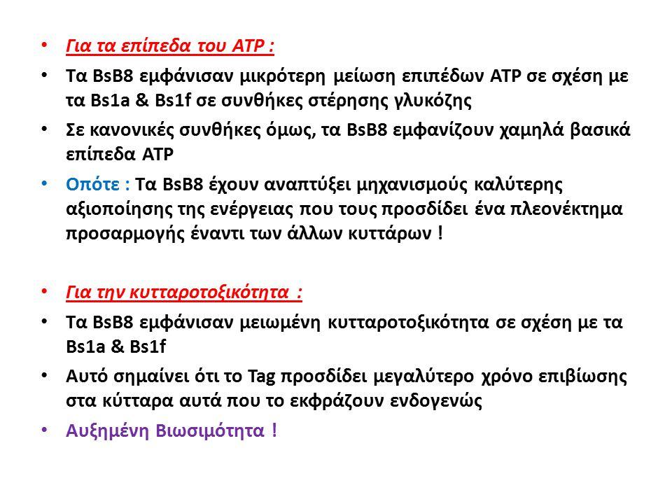 Για τα επίπεδα του ATP : Τα BsB8 εμφάνισαν μικρότερη μείωση επιπέδων ATP σε σχέση με τα Bs1a & Bs1f σε συνθήκες στέρησης γλυκόζης Σε κανονικές συνθήκες όμως, τα BsB8 εμφανίζουν χαμηλά βασικά επίπεδα ATP Οπότε : Τα BsB8 έχουν αναπτύξει μηχανισμούς καλύτερης αξιοποίησης της ενέργειας που τους προσδίδει ένα πλεονέκτημα προσαρμογής έναντι των άλλων κυττάρων .