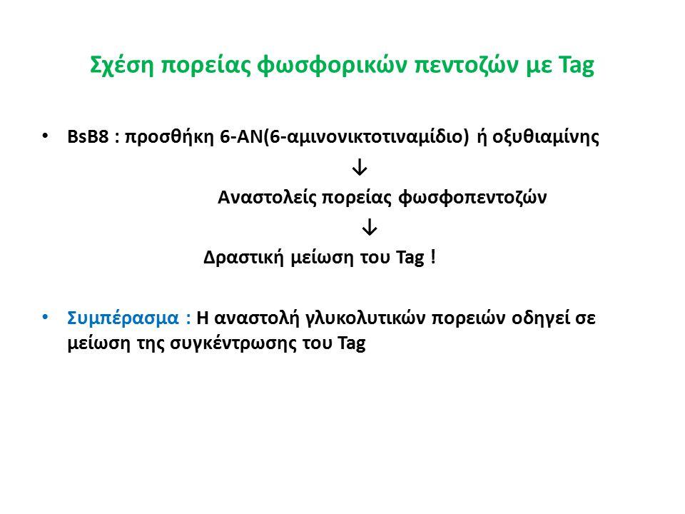 Σχέση πορείας φωσφορικών πεντοζών με Tag BsB8 : προσθήκη 6-AN(6-αμινονικτοτιναμίδιο) ή οξυθιαμίνης ↓ Αναστολείς πορείας φωσφοπεντοζών ↓ Δραστική μείωση του Tag .