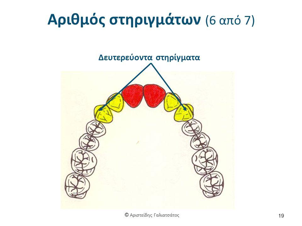 Αριθμός στηριγμάτων (6 από 7) 19 Δευτερεύοντα στηρίγματα © Αριστείδης Γαλιατσάτος