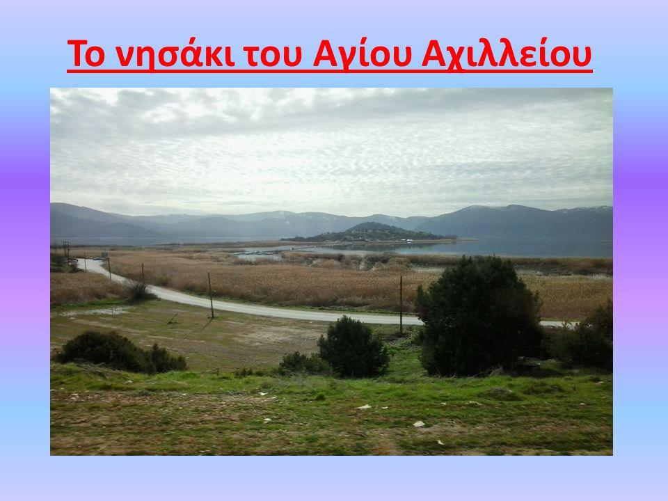 Αποτελεί μία από τις μεγαλύτερες βασιλικές της Ελλάδας και για το λόγο αυτό έδωσε το όνομά της στο νησί.