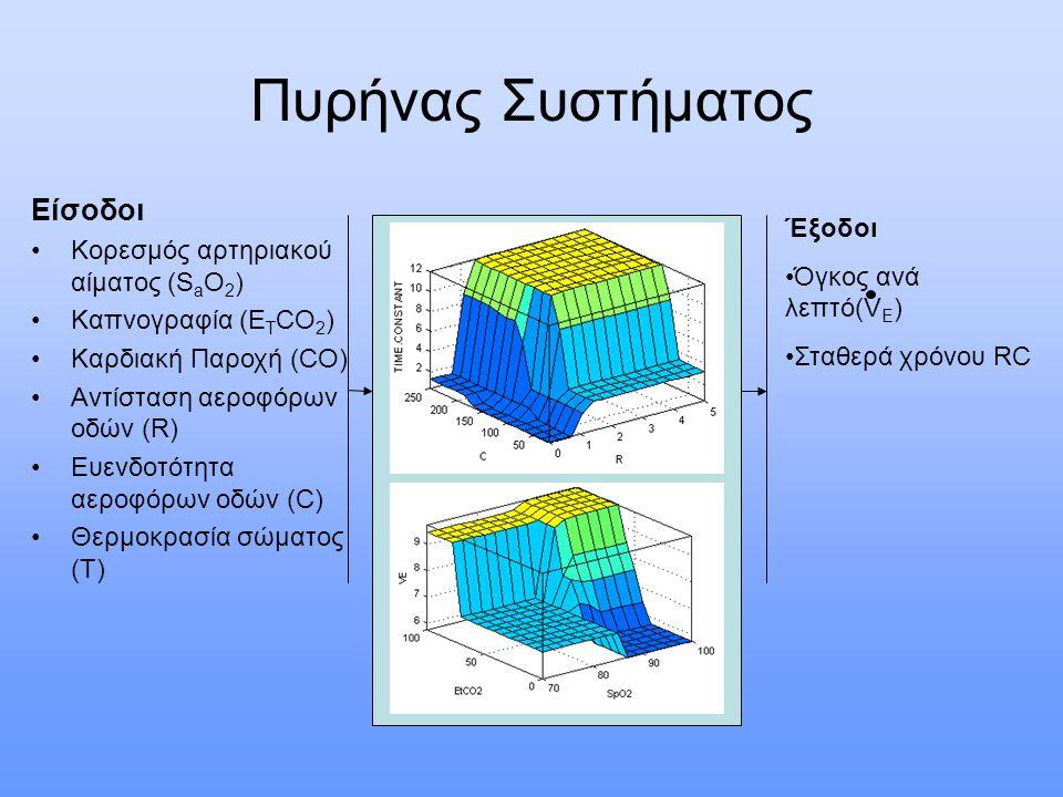 Πυρήνας Συστήματος Είσοδοι Κορεσμός αρτηριακού αίματος (S a O 2 ) Καπνογραφία (E T CO 2 ) Καρδιακή Παροχή (CO) Αντίσταση αεροφόρων οδών (R) Ευενδοτότητα αεροφόρων οδών (C) Θερμοκρασία σώματος (T) Έξοδοι Όγκος ανά λεπτό(V E ) Σταθερά χρόνου RC